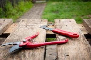 gardening-tools-Chiropractor-Renton